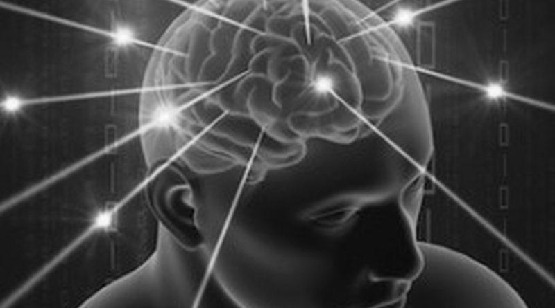 cellule cervello
